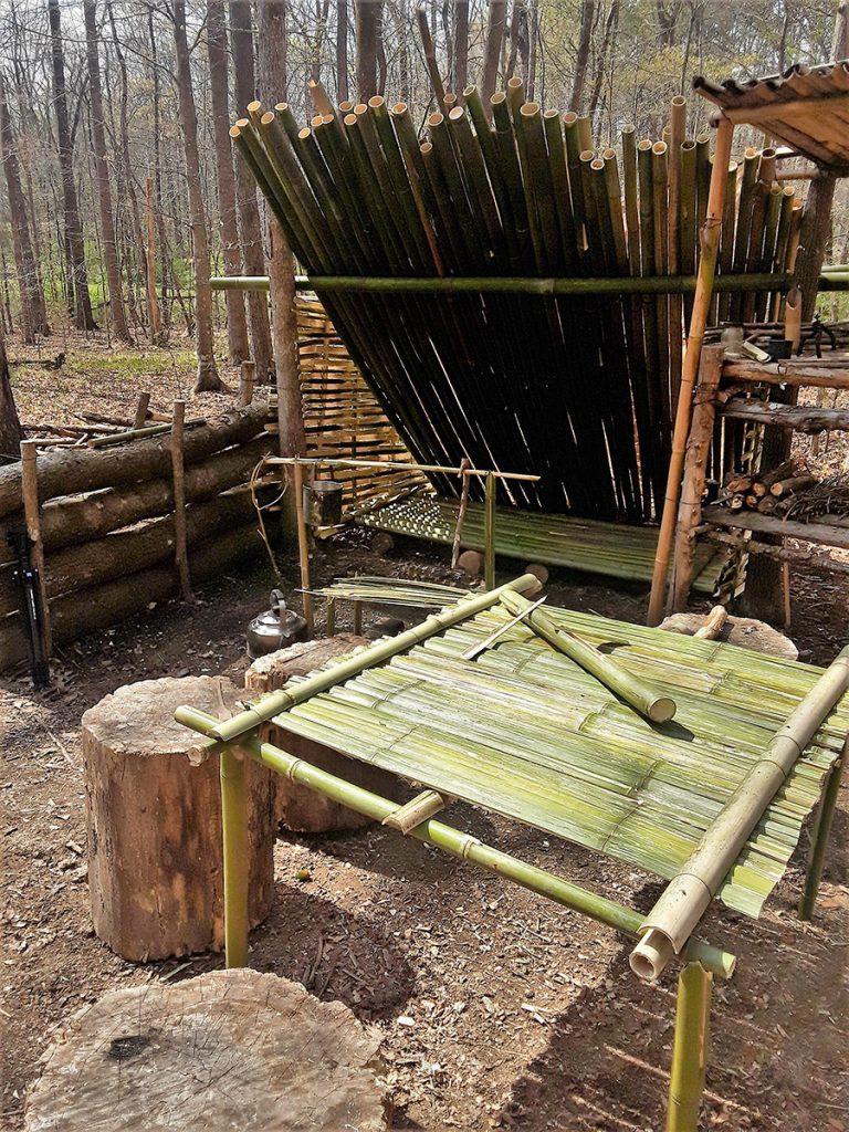 Bamboo camp